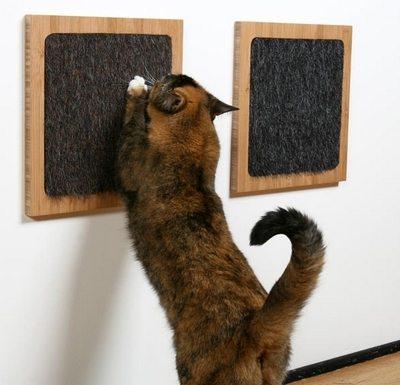 GAto usando um arranhador colado a parede